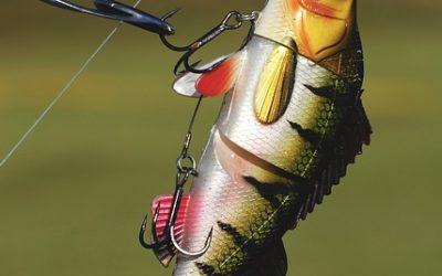 Comment choisir un leurre pour bien pêcher?